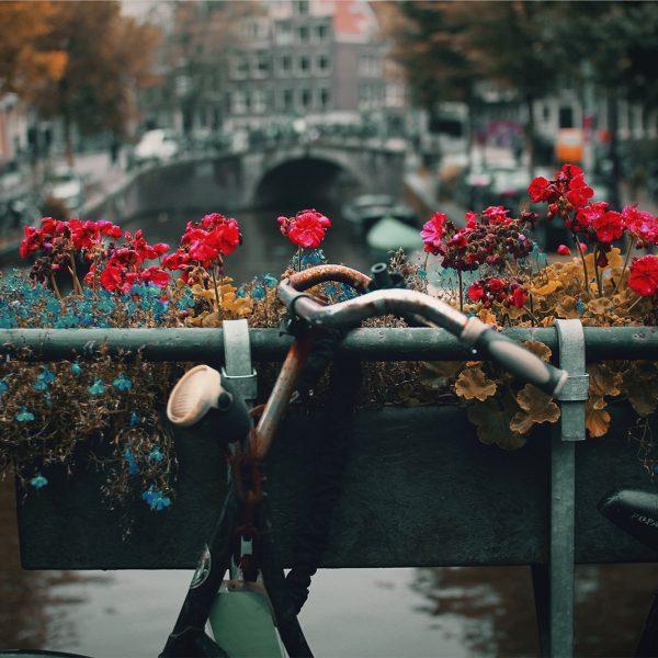 Ámsterdam, canales, coffee shops y paseos en bicicleta