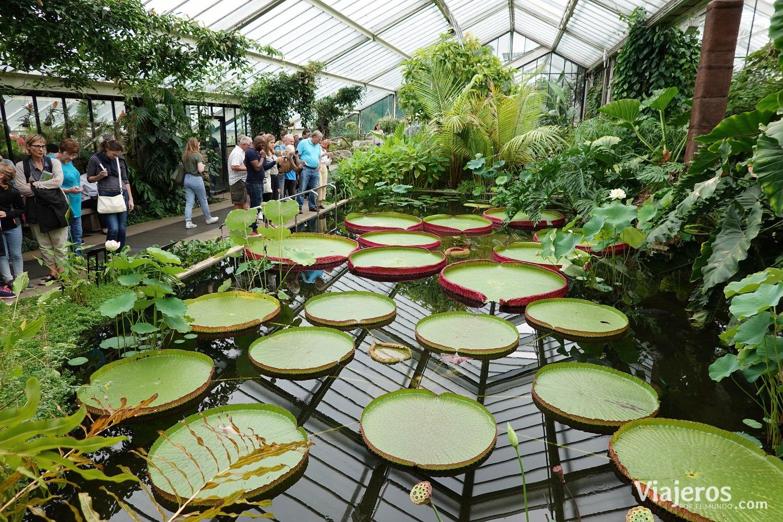 que-visitar-londres-kew-gardens