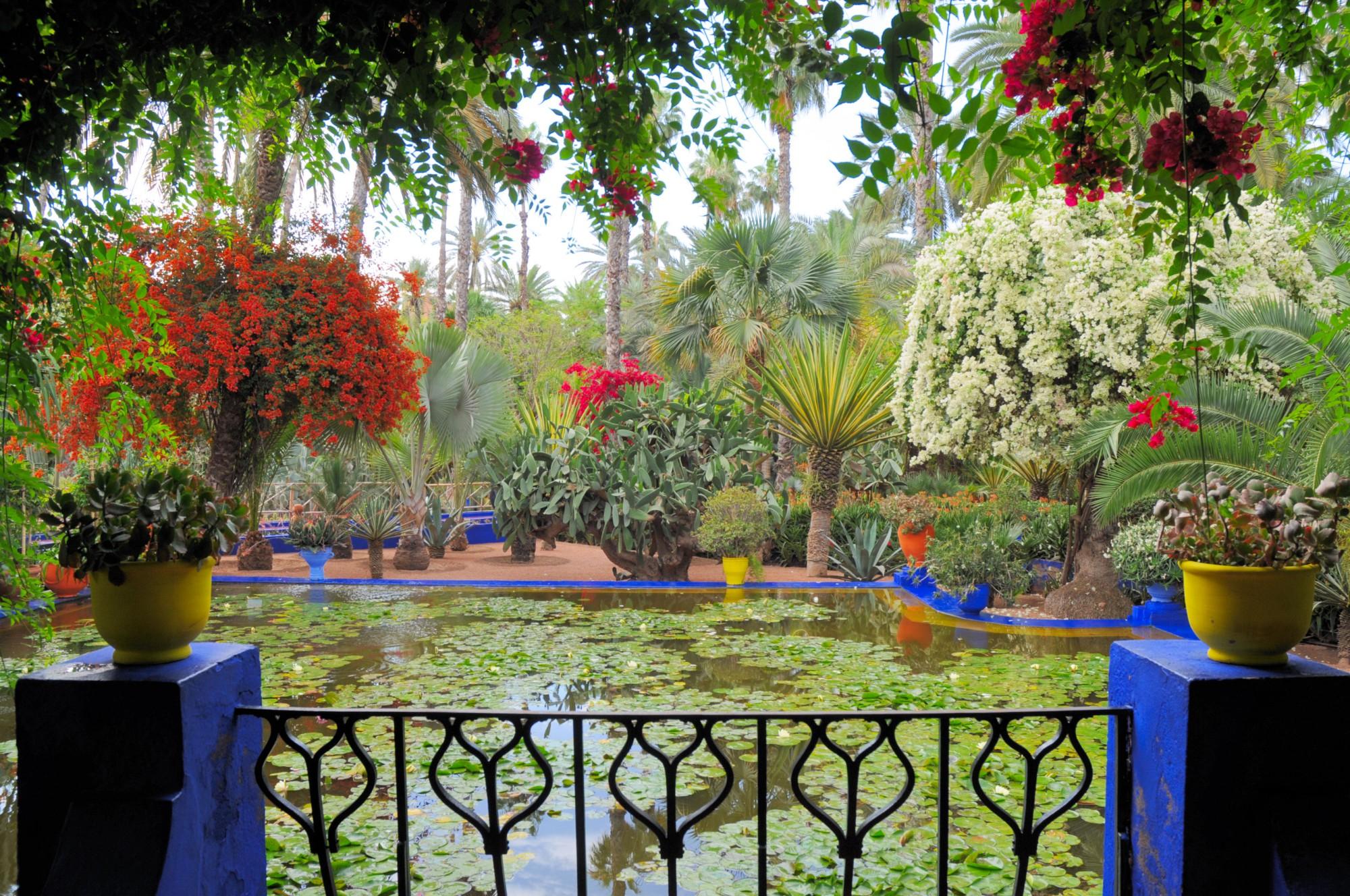 que ver en Marrakesch Jardín de Majorelle