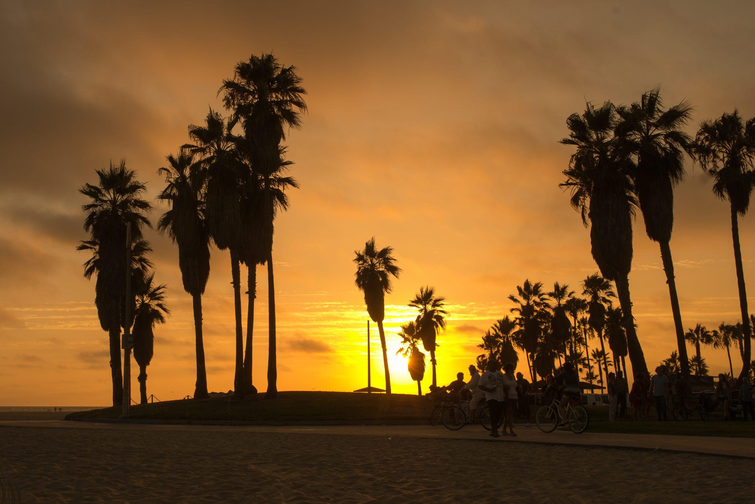 qué ver en Los Ángeles Venice Beach