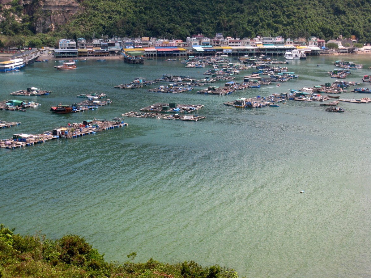qué-ver-en-Hong-Kong-Isla-Lamma