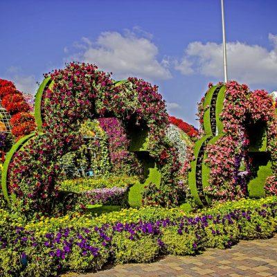 Miracle Garden: el jardín natural más grande del mundo