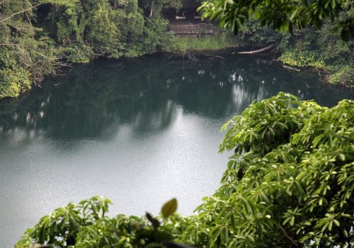 Bukit Timah, reserva natural
