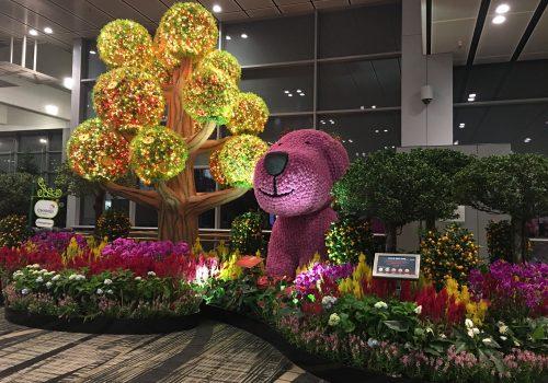 Canopy Park, diversión en el aeropuerto