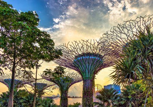 Jardines de la Bahía en Singapur