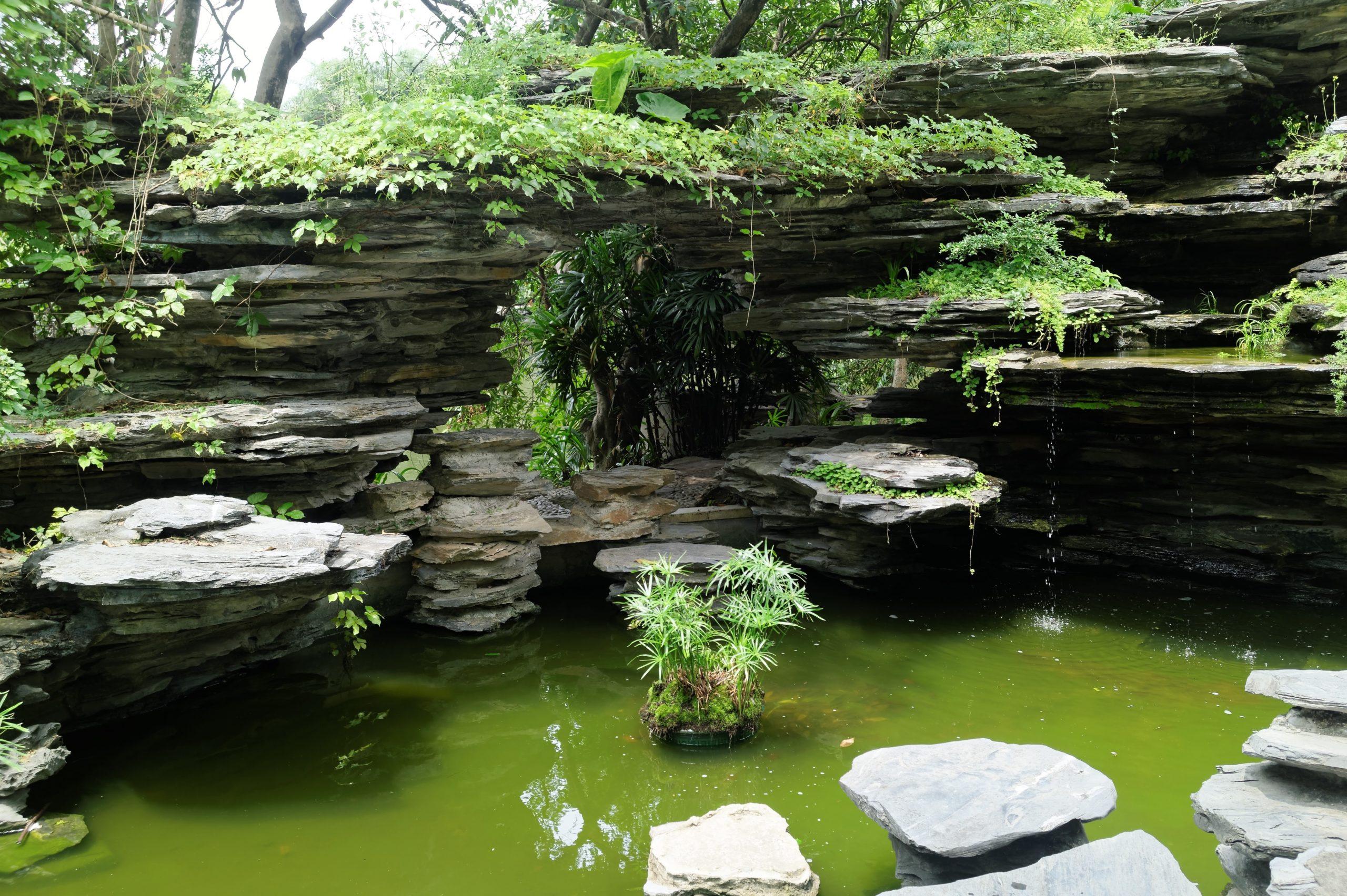 Shenzhen, equilibrio entre tecnología y naturaleza - Viajeros por el Mundo