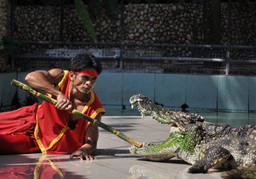 Zoo de Phuket