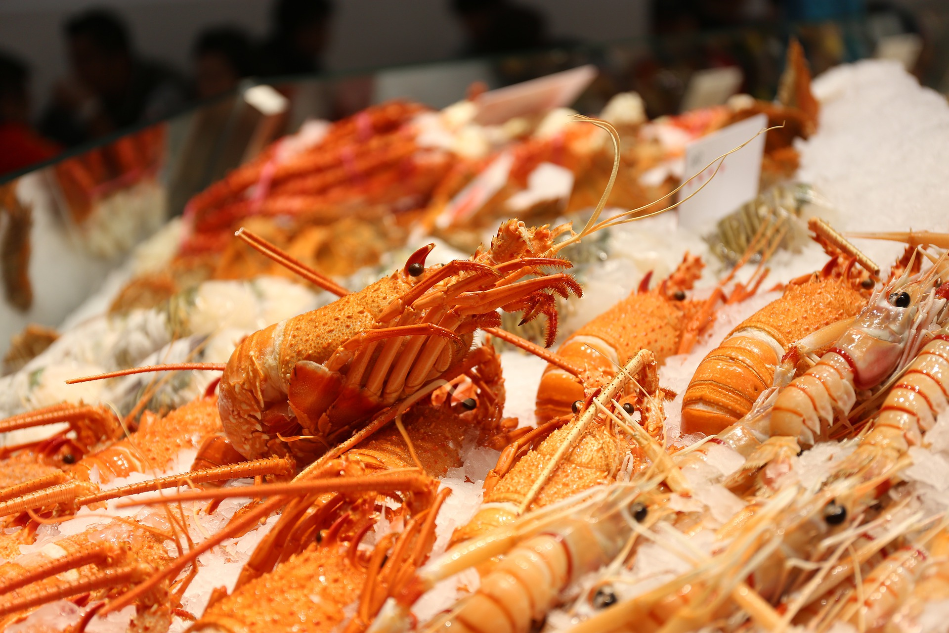 qué ver en Guangzhou Huangsha Aquatic Product Trading Market