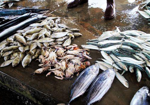 Huangsha Aquatic Product Trading Market