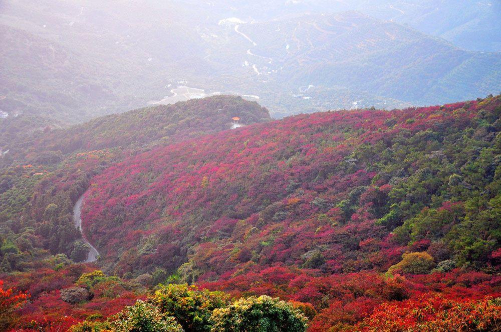 qué ver en Guangzhou Shimen National Forest Park