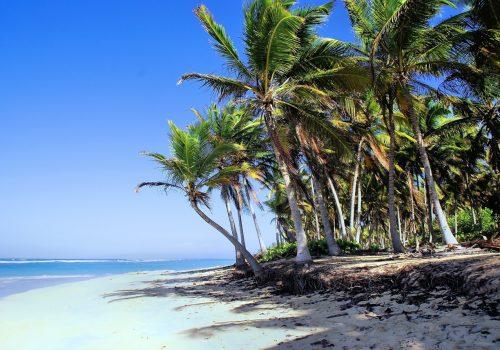 El trío de ases del Caribe, el paraíso soñado